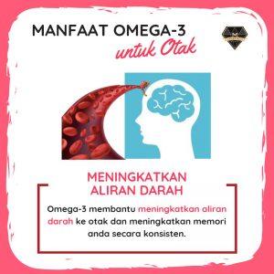 manfaat omega3