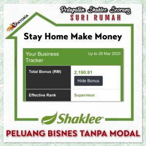 bisnes online shaklee 1